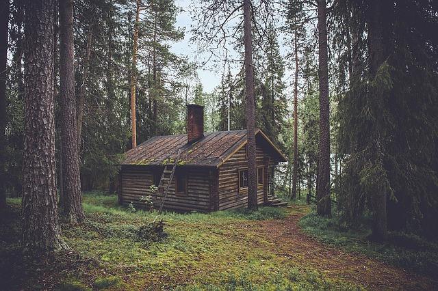 chatrč v lese