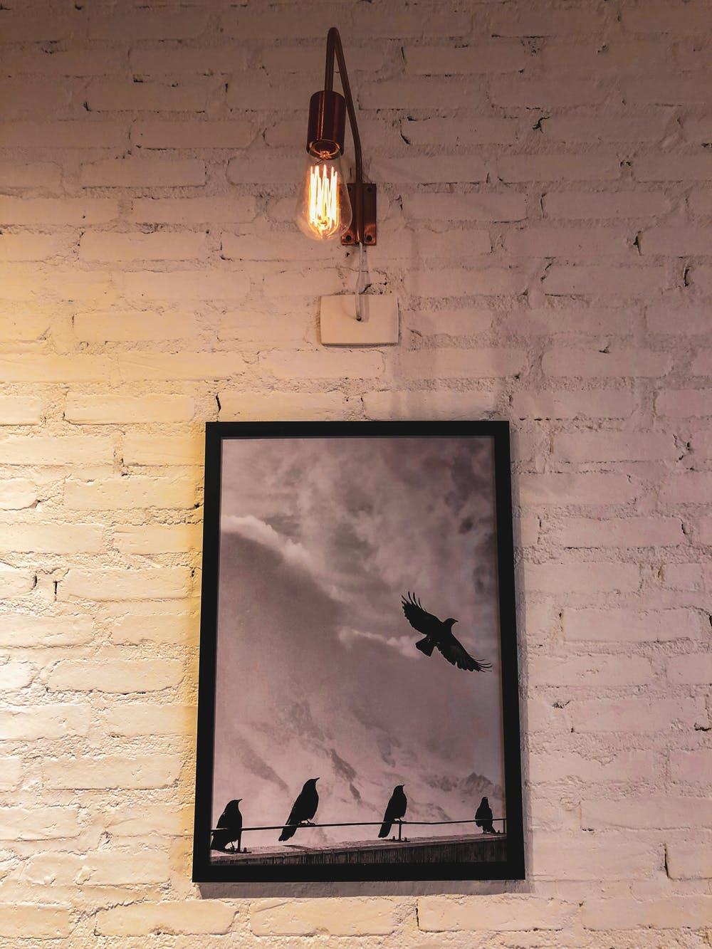 svítíme žárovkou